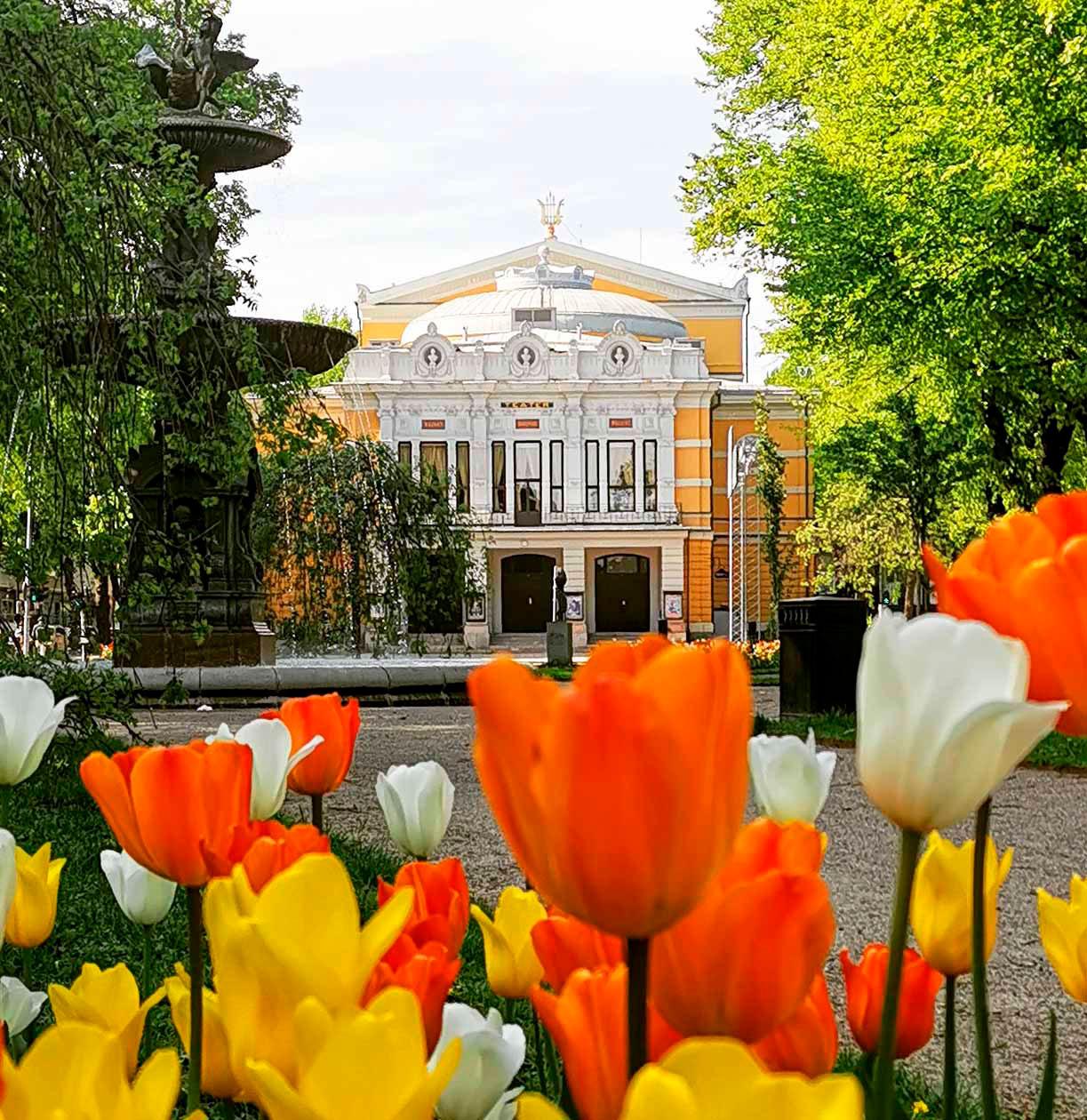 Bild av Gävle Teater med tulipaner